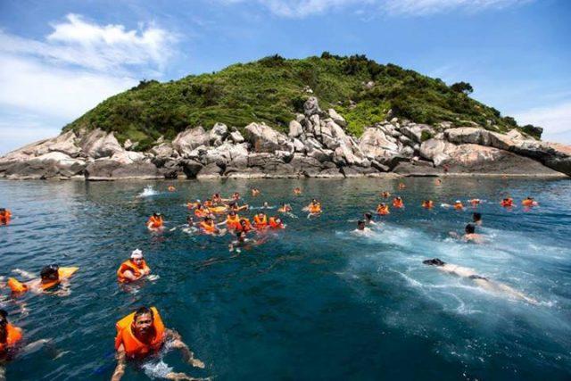 Lặn biển, ngắm san hô tại Cù Lao Chàm