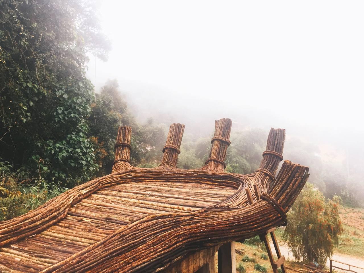 Hoa  sơn điền trang – Điểm du lịch mới toanh của Đà Lạt có gì hay ho? 6