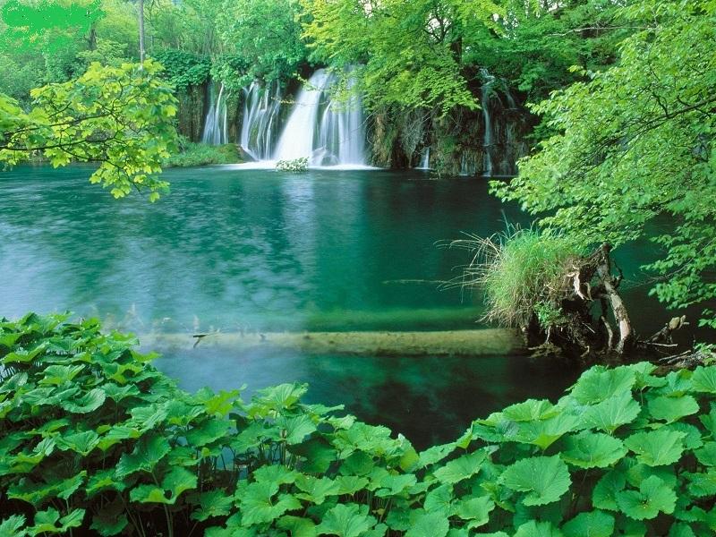 Vườn quốc gia Phú Quốc -vẻ đẹpthiên nhiên bất tận