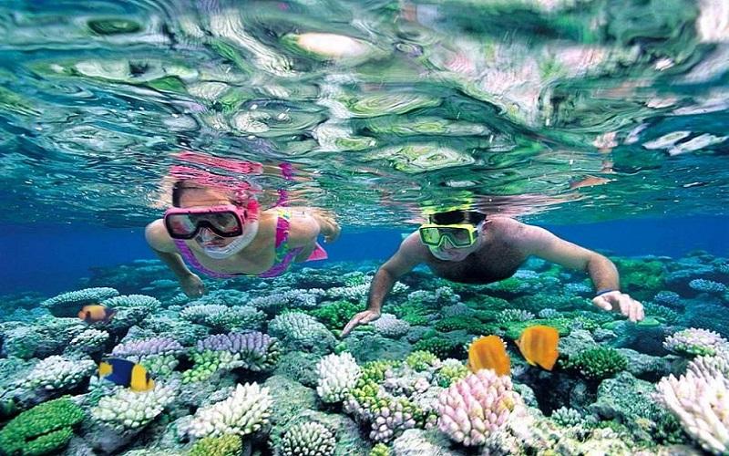Lặn ngắm san hô ở khu quần đảo An Thới (Phía Nam Phú Quốc)