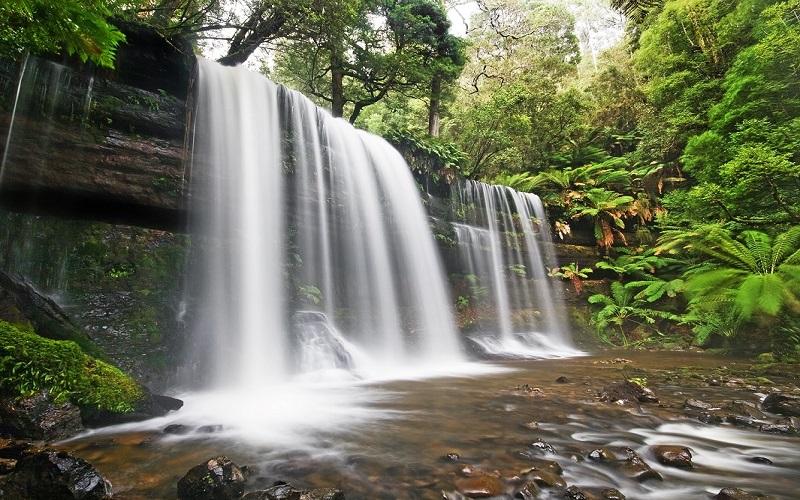 Thác Prennthích hợp cho những ai thích khám phá khung cảnh núi rừng