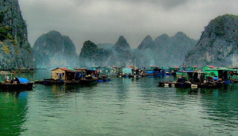 Đắm chìm trong những làng chài nổi yên bình ở Hạ Long