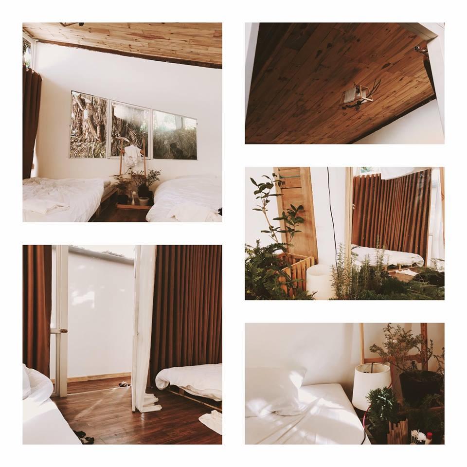 The Wilder-nest homestay Đà Lạt