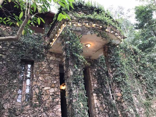 Jungle House Bắc Ninh